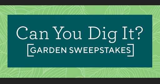 QVC Can You Dig It? Garden Sweepstakes