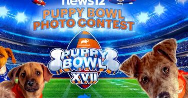 News 12 Puppy Bowl Contest 2021